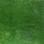 Couleur Vert-Poterie d'Anduze -Les Enfants de Boisset